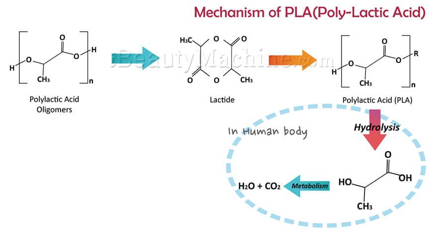mechanism-of-PLA